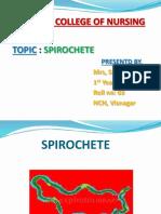 spirochete ppt