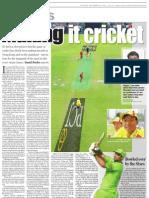 Making It Cricket