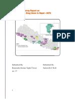 report drug survey_2076.docx
