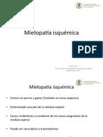 Mielopatía isquémica