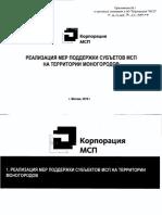 Презентация МСП