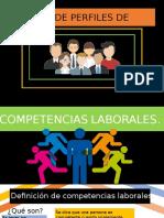DISEÑOS DE PERFIL1.pptx