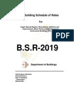 bsr 2019.pdf