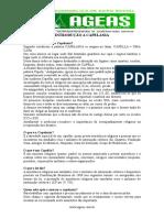 54771603-INTRODUCAO-A-CAPELANIA.doc