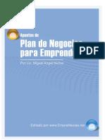 NUÑEZ Plan de Negocios para Emprendedores