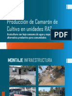 CAMARON EN RAS PDF