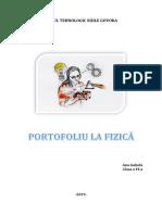 Portofoliu fizica Ana Isabela.docx