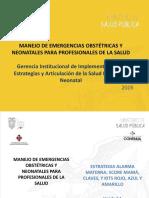 Manejo de Emergencias Obstétricas y Neonatales para Profesionales de la Salud