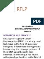 Rflp presentation.pptx