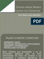 Curso sobre Bases Curriculares en Ciencias RESUMEN.pptx