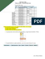fisa_de_lucru_excelfiltrarea_datelor.doc