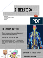 EVOLUCION NERVIOSA.pptx