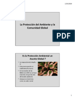 9. La Proteccion del Ambiente y la Comunidad Global