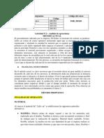 Formato Actividad N°2 (1).docx