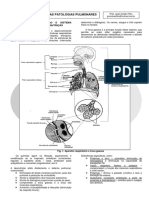 23. Doenças Pulmonares