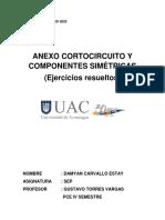 Anexo comp. simétricas y coci..docx