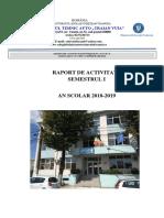 RAPORT_DE_ACTIVITATE_OK.pdf