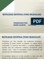 MOTILIDAD ESTÁTICA (TONO MUSCULAR)