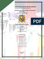 LEYES DE GASES IDEALES  final.docx