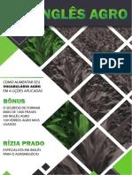 EBOOK Vocabulário Atualizado.pdf