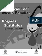 267_Evaluacion_del_medio_familiar_Hogares_Sustitutos_y_Amigos_del_ICBF_DOC.pdf