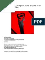 Interpretacion_emergente_y_una_pequena_d.pdf