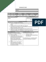 Estructura Ejemplo Liderazgo en Minería_NC