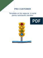 TEMPLATE BO - PRO Customer_Martie 2017.doc