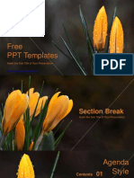 Natural Flower-de-luce PowerPoint Templates
