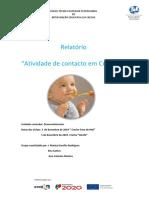 Atividade de contacto em Creche_orientações (1)