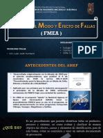 AMEF(1)