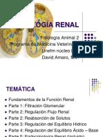 Fisiologia Sistema Renal (1)
