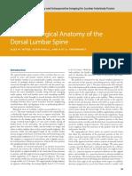 3---Relevant-Surgical-Anatomy-of-the-Dorsal-Lumba_2019_Lumbar-Interbody-Fusi