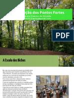 20141210_CECOM_Satisfacao-Profissional_v8.pdf