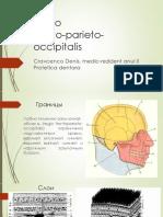 Regio fronto-parieto-occipitala