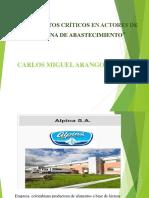 PUNTOS CRITICOS ALPINA.pptx
