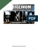 IN BIGLINUM.pdf