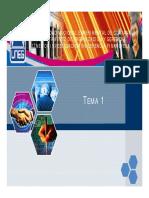 SLIDE TEMA I.pdf