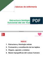 T1 CELULAS Y TEJIDOS TBE.pdf