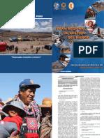 PLAN REGIONAL GRD  PUNO V RESUMIDA.pdf