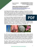 1 EL RELOJ INTERNO DE LAS PLANTAS DIA LARGO DIA CORTO ENE 2020