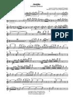 Janjão - Flautim e Flauta