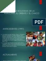 LA SOCIEDAD BOLIVIANA DE LA AMAZONIA