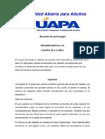 tarea unidad 7 y 8 de metodologia.docx