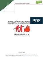 Apostila Curso Básico de Prevenção e Combate a Incêndio Florestal.docx