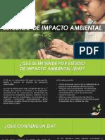 ESTUDIOS DE IMPACTO AMBIENTAL EIA PRES.pptx