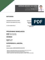 CVGERSONMENDEZNAVARRO2020.docx