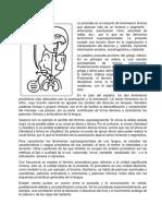 PROSODIA, LINGUISTICA Y PROXÉMICA.docx