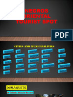 NEGROS ORIENTAL TOURIST SPOT.pptx