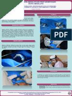 Póster_.pdf-PDFA
